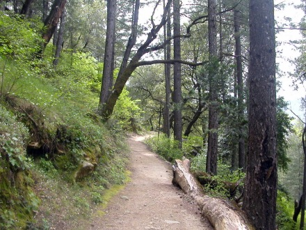 The Feather Falls Trail is another great California hiking trail.