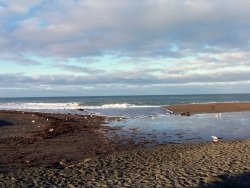 Northern California Beaches