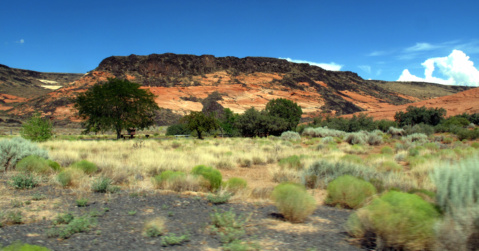 Snow Canyon Lava Flows