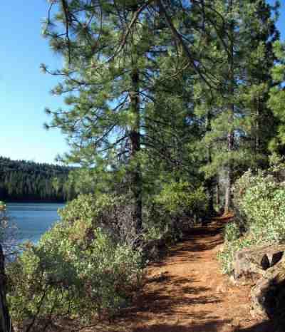 Sugar Pine Reservoir Hiking Trail